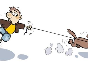 Il mio cane tira al guinzaglio! Solo questione d'addestramento?