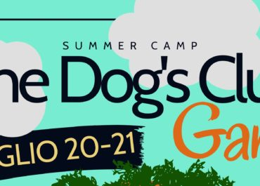 Summer Camp Game 2019