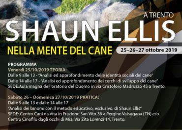Workshop Teorico Pratico con Shuan Ellis